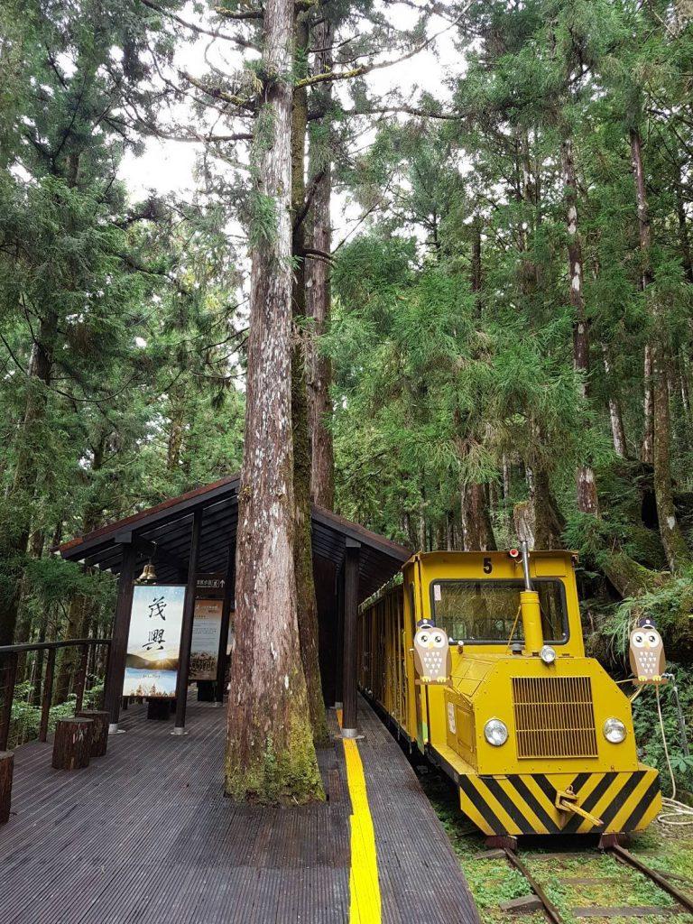宜蘭太平山森林小火車終於與大家見面囉!